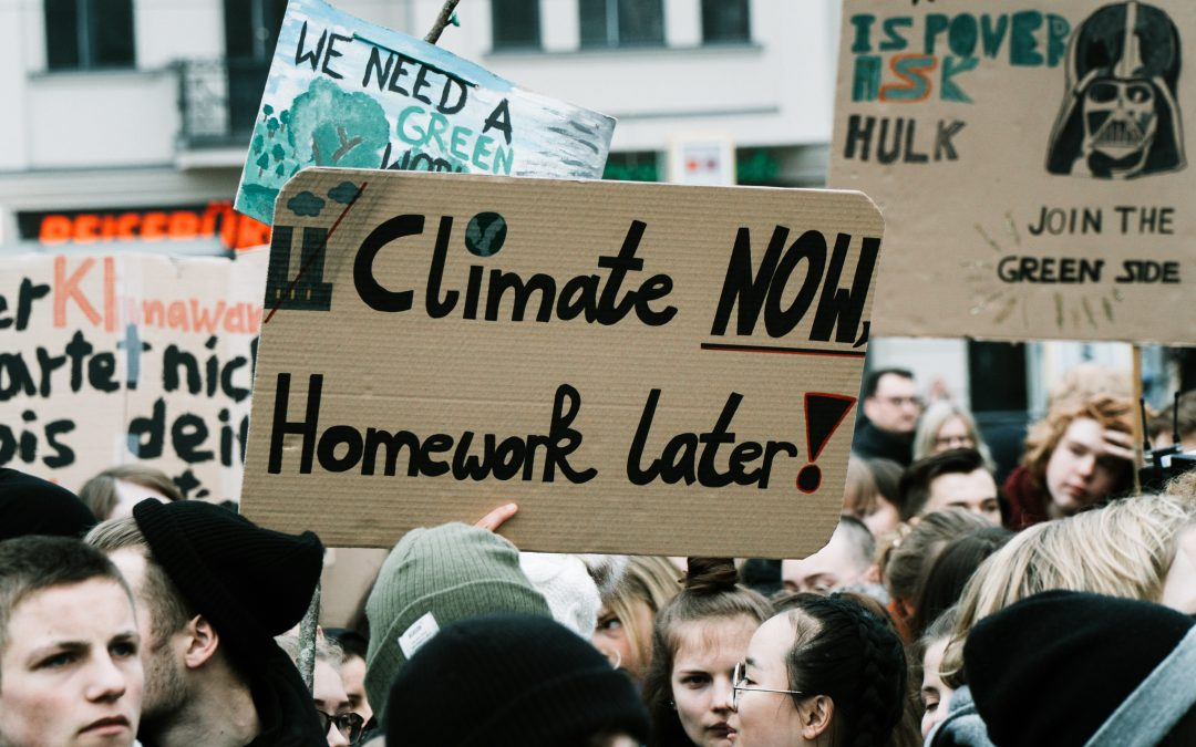 The problem with our youth's climate strikes – A letter to our youth