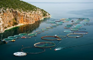 Aquaculture: Principles, history and current challenges on the road to sustainability
